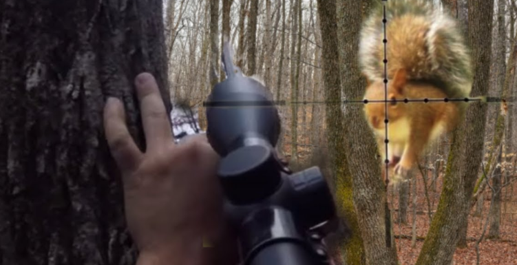 Why Should You Buy A Scope For 22lr Squirrel Hunting
