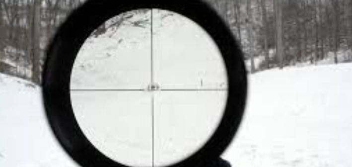 Who Should Buy This Scope