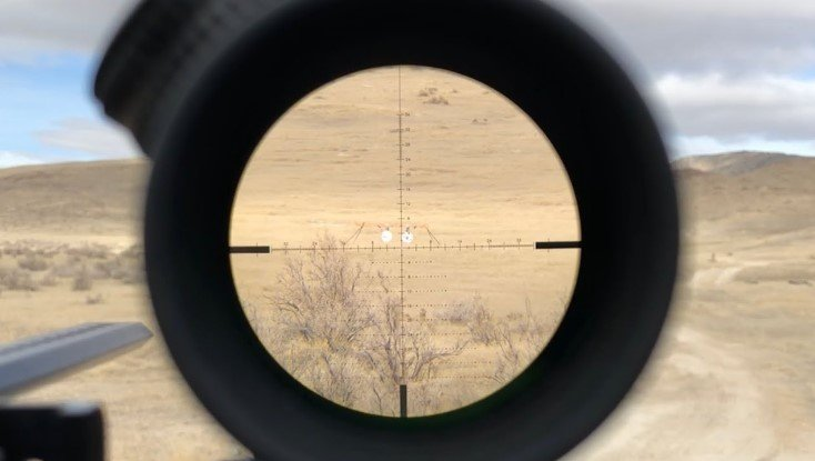What Magnification Should Be Used for 1,000-yard Shots?